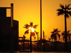Sunset in the City (V I J U) Tags: sunset silhouette doha qatar fiatlux khalifastadium dsch5 diamondclassphotographer flickrdiamond amazingqatar