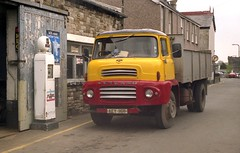 Un-expected find. (Renown) Tags: truck lorry beaumaris leyland anglesey northwales leylandcomet oldpetrolpump ladcab aey116b