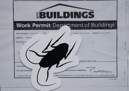 Building Permit Roach Art