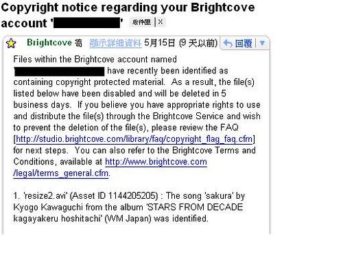 Brightcove Copyright