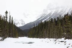 2017-SLP-002-032 (Si Longworth (Army Photographer)) Tags: jaspernationalpark 5d mk4 saskatchewanrivercrossing alberta canada ca sunwapta falls winter snow ice landscapes winterscapes