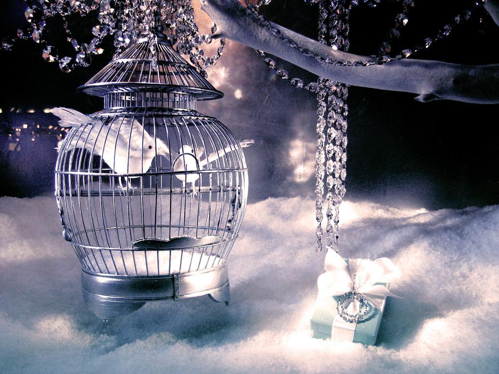 Tiffany & Company - Página 5 2144489026_29bb33f052_b