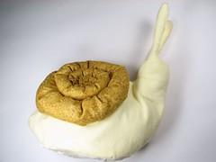A velvet bristlebot racing snail