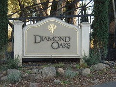 Diamond Oaks