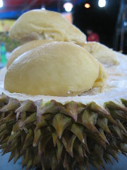 CNY Day 5 Durian D24 Range (Su--May) Tags: travel food macro yellow fruit breakfast night dinner season lunch succulent yummy singapore soft yum skin market seasonal super chinesenewyear fresh east gourmet delicious desire foodporn cny experience meal vegetarian durian sensational fav supper favourite makan geylang thick mania iatethis craving mouthwatering addictive intoxicating crave irresistable tastebud d24 gourmetfood ratyear crazydurians maoshanwangguanjun nightvendor