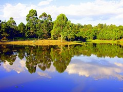Espelho (Claudio Marcon) Tags: trees brazil lake green nature water brasil reflections lago mirror natureza explore reflejo santamaria reflexo cubism itaara espelhodgua fotoclube mywinners diamondclassphotographer flickrdiamond photoexplore claudiomarcon claudiolmarconribeiro thebestofmimamorsgroups