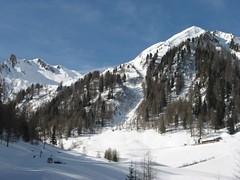 henne 014 (stefanoamandolesi) Tags: tirol die madonna di land alm henne 2008 dem scialpinismo lourdes titti ahrntal asilo treue pircher aurina weissenbach skitourenvalle gornerberg