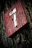 deadly (TerryJohnston) Tags: tree riverside michigan 7 seven photowalk marker grandrapids riversidepark grap amazingmich