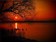 Yesterday's sunset at Lake Poenitz (Ostseetroll) Tags: deu deutschland geo:lat=5403525633 geo:lon=1069834682 geotagged scharbeutz schleswigholstein sonnenuntergang sunset wasser water pönitzersee lake spiegelungen reflections