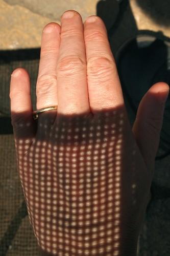 summer's glove