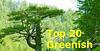 Top 20 Greenish