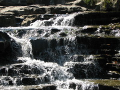 Tanyard Creek - 025 (Dug Hill, Arkansas, United States) Photo