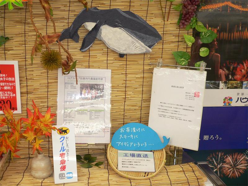 Japan & Whale
