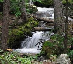 Chicago Creek (Sandra Leidholdt) Tags: usa naturaleza mountains nature america rockies us waterfall colorado unitedstates natur rocky american cascade mts montanhas amricain chicagocreek sandraleidholdt leidholdt sandyleidholdt