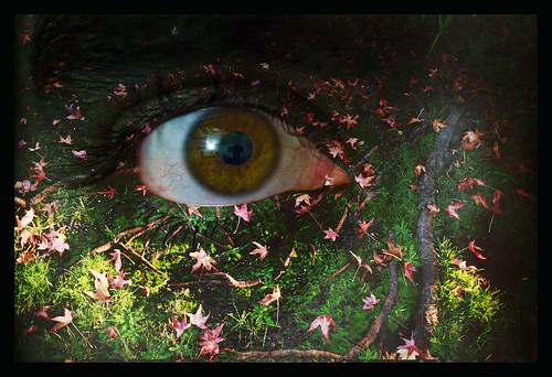 Eyeground 2