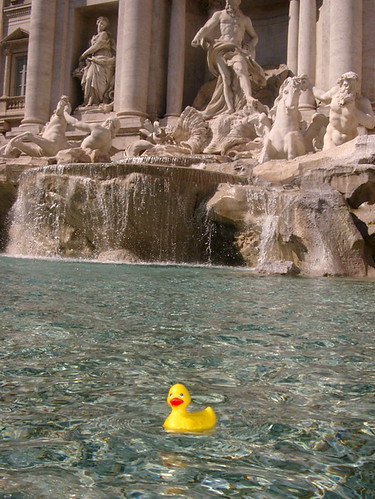ardy in trevi