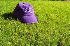 go Suns! (dorsalfin) Tags: green grass purple suns phoenixsuns greengrass dorsalfin purplegreen