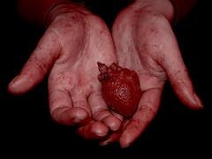 Heartless (-Passenger-) Tags: sadness blood hands heart surgery depression despair passenger inlove toughness cruzadas goldcruzadas