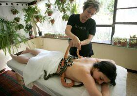 snake_massage