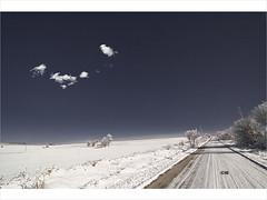 Unclouded Story (howbizarre) Tags: winter sky cloud snow cold tree nikon path d70s bulgaria rime         vakarel