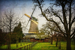 Dutch Windmill (siebe ) Tags: holland texture windmill dutch nederland thenetherlands molen zevenaar dehoop hollandstock