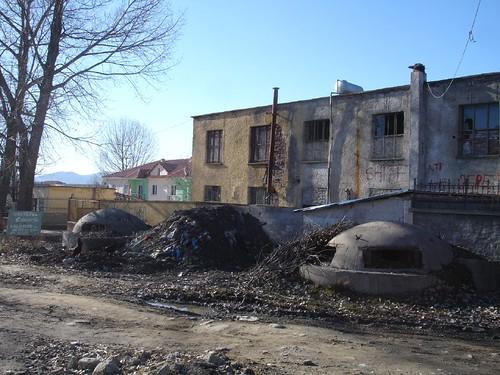 Bunchere în Albania