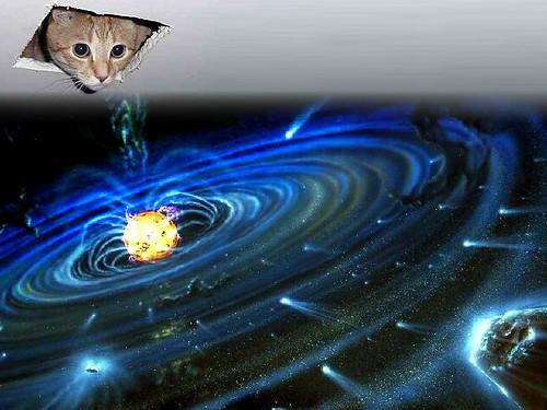 Ceilin Cat Creates the Universe