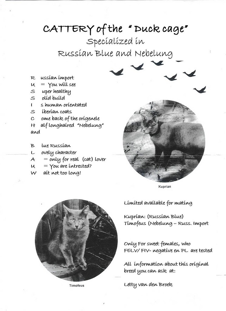 Publications - the first dutch Nebelung- 1994 2320887158_ae43b82a77_b
