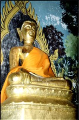 """TH 01 Buddha • <a style=""""font-size:0.8em;"""" href=""""http://www.flickr.com/photos/49106436@N00/2450755869/"""" target=""""_blank"""">View on Flickr</a>"""