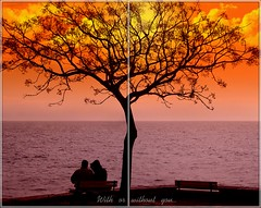 With or without you.. (HakanGil) Tags: sunset sea sky orange color tree love clouds photoshop turkey bench u2 geotagged colorful alone emotion trkiye istanbul best together lonely soulful bestofthebest sentimental sensation cubism cs3 withorwithoutyou blueribbonwinner bej golddragon freephotos abigfave anawesomeshot infinestyle goldenphotographer theunforgettablepictures fenerbahepark hakangil proudshopper theperfectphotographer goldstaraward naturallyartificial thechallengefactory flickrlovers goldenheartaward 100commentgroup