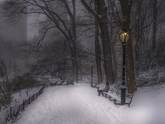 Waiting for you (karinavera) Tags: travel sonya7r2 weather day newyork nyc centralpark snowing snow