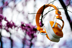 The Sounds of Spring (Universal Stopping Point) Tags: orange tree love yellow contrast spring wire colorful dof purple lexington kentucky poppy headphones maraca redbed wesc yellowheadphones wescmaraca butreallyyellow