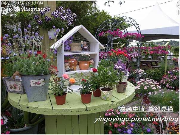嘉義中埔_綠盈農場20110417_R0019056