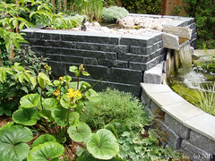Balinese Inspired Water Garden ~ Upper Falls - Aqua Grantique Gniess Natural Wall Stone (Switzer's Nursery & Landscaping) Tags: bali water minnesota landscape design waterfall pond stream landscaping glenn watergarden waterfeature northfield balinese switzers plungepool switzer landscapedesign designbuild hardscape hardscaping glennswitzer naturalpond landscapepond switzersnursery landscapedesigns theartoflandscapedesign switzersnurserylandscaping artoflandscapedesign