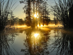 in the blink of an eye... (M t H) Tags: morning mist lake fog sunrise reflections dawn spanishmoss cypress wink sunup mth eyeopener