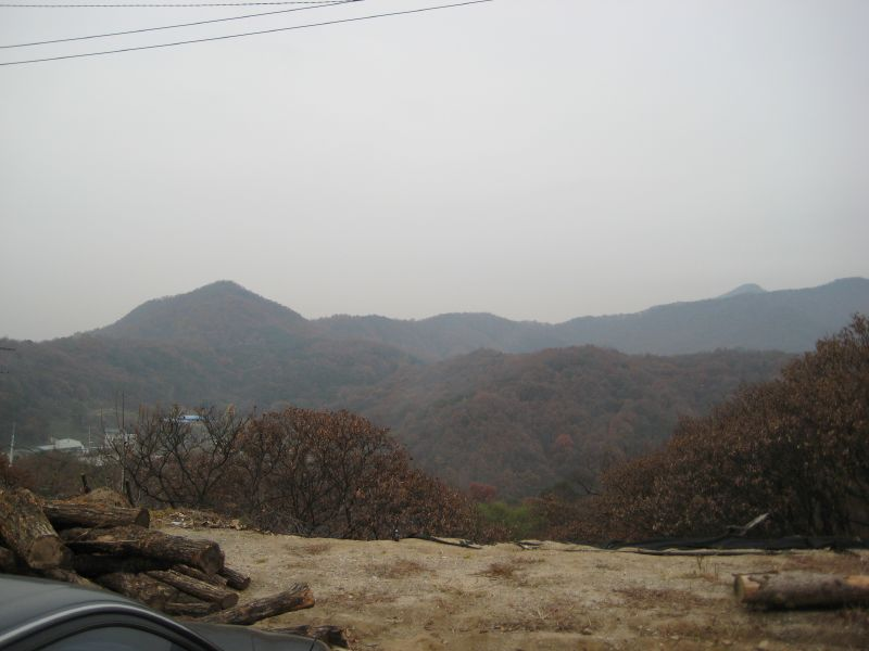 Korea, Visit, Louis, Duck, Lunch 008