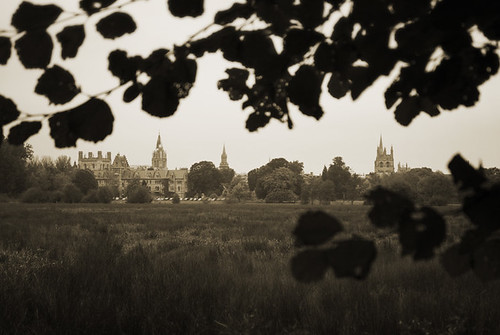 Christchurch Meadow