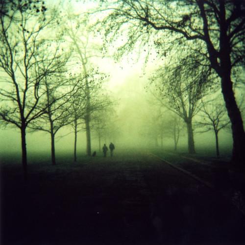 Holga 120 - Victoria park