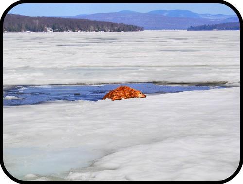 Chanelle lac