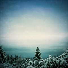 Winter's Grip (Colormaniac too) Tags: winter landscape colorful nature evergreens trees snow snowfall february sequim olympicpeninsula washingtonstate pacificnorthwest topazimpression topaztextureeffects distressedtextures