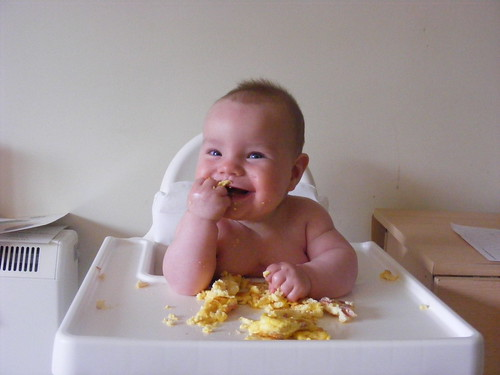 Omelettes | Baby Led Weaning Recipes and Ideas