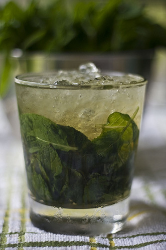 A Mint Julep cocktail.