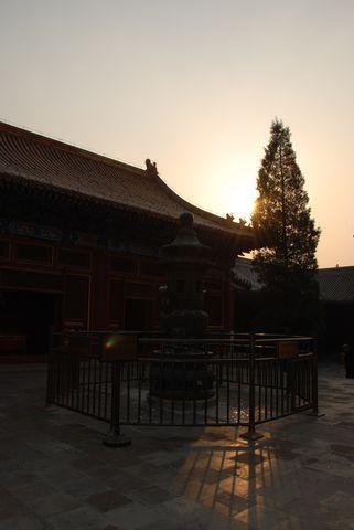 Pekin - temple des Lamas (34) [480]
