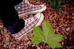 Stones!! (Honey Pie!) Tags: autumn rock shoes stones curitiba converse allstar pedras chucktaylor tnis cybershotdscs650