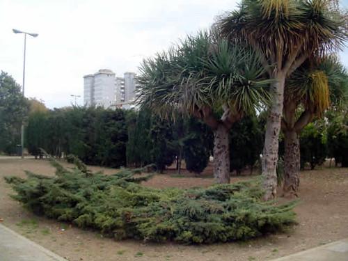 parque Krekovic en Palma