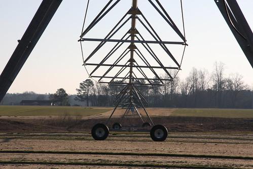 Irrigation Triangles