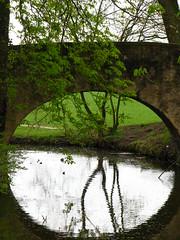 Under the bridge (x3 Nostalgie x3) Tags: bridge reflection tree water wasser brcke spiegelung baum reflektion hanau mirroring kurpark wilhelmsbad