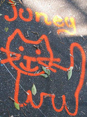 juney the basketball court kitty (jacob earl) Tags: urban streetart art graffiti mural downtown ottawa slaterst techwall uppertechwall