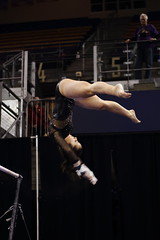 2017-02-11 UW vs ASU 42 (Susie Boyland) Tags: gymnastics uw huskies washington