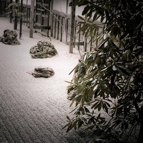 15179 : Silence Garden 3 -Kongobuji Temple #5-